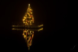 Christmastree in the Water
